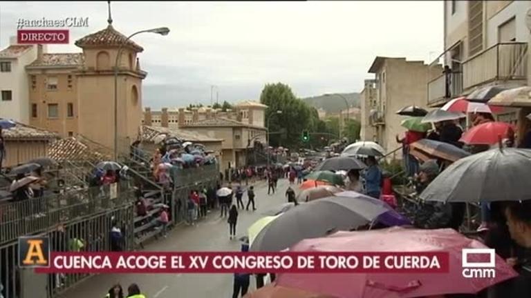 Especial XV Congreso Nacional del Toro de Cuerda
