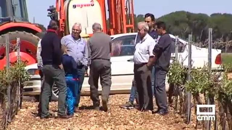 Cuenca y Albacete, las provincias de CLM más afectadas por la tormenta de granizo