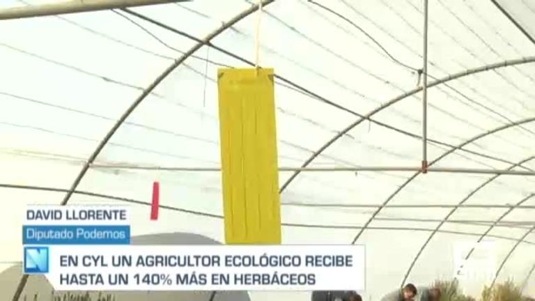 Las Cortes debaten las ayudas a la agricultura ecológica