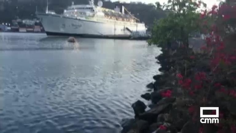 En cuarentena por sarampión un crucero de la cienciología con 300 personas