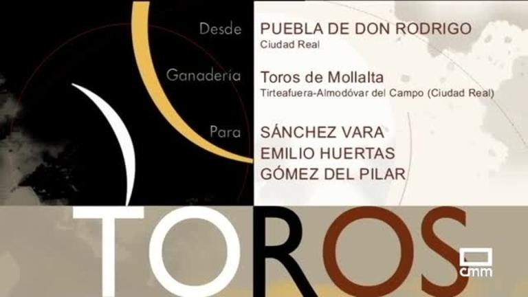 Toros desde La Puebla de Don Rodrigo