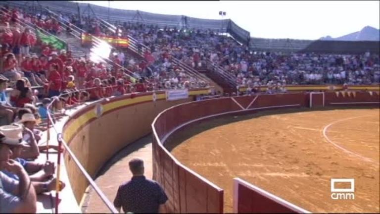 Toros desde Cenicientos