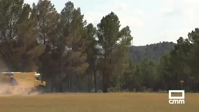 Una chispa al cortar leña, posible causa del incendio en Agramón