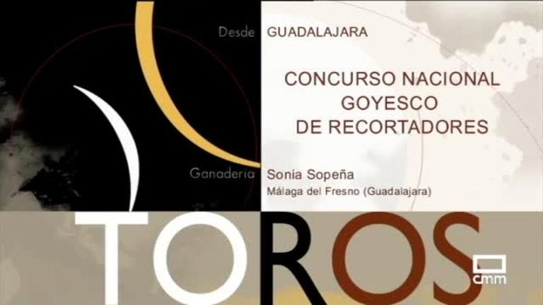 Concurso nacional Goyesco de recortadores