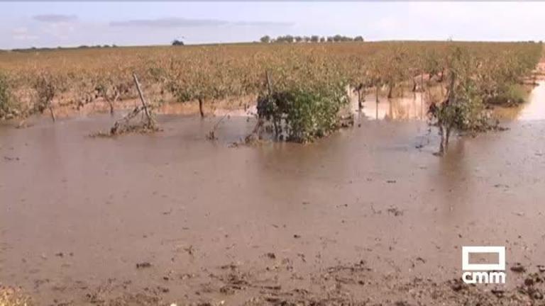 Así han sido los daños causados por las tormentas en los campos de la región