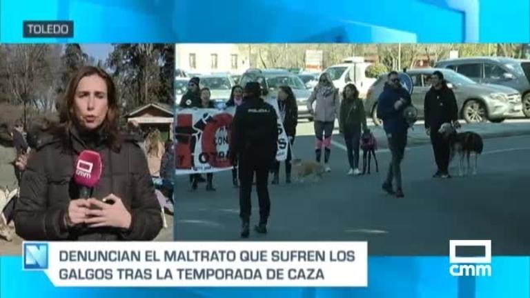 Manifestaciones en contra de la caza en Toledo, Guadalajara, Cuenca y otras 32 ciudades españolas
