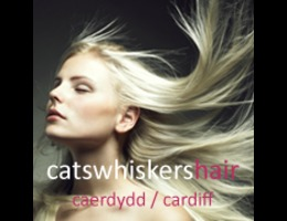 Cats Whiskers Hair Salon