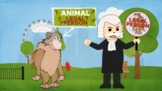 """Chimpanzees are animals, But are they """"persons?"""""""
