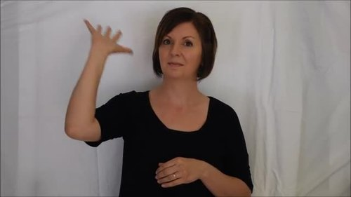 Master ASL - Unit 6 Vocabulary Power Points (With gifs)