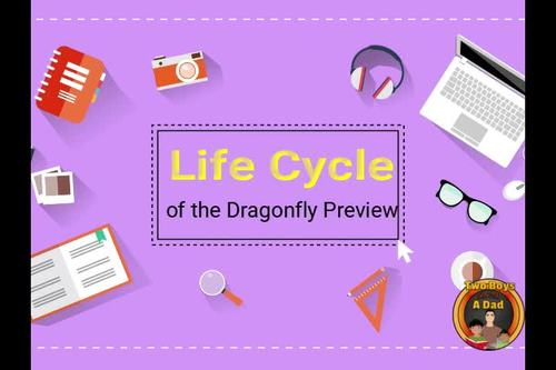 Life Cycle of the Dragonfly Digital Interactive Notebook for Google Slides