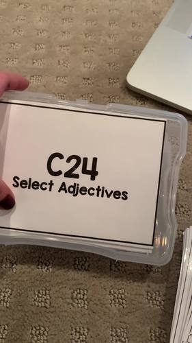 Adjective Task Cards [ABLLS-R Aligned C24, G13]