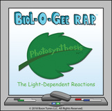 Photosynthesis: The Light-Reactions - Biol-O-Gee R.A.P.