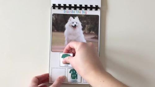 Describe the Dog with Adjective + Noun (Interactive Book)