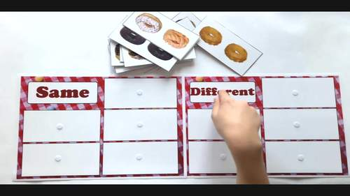 Same and Different Sorting for Autism and Special Ed Set 2