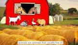 Farm Animals 1: Sheep, Pig, Cow, Chicken