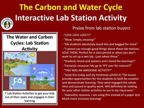 The Carbon and Water Cycle - 7 Engaging Lab Station Activities