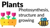 Plants - Photosynthesis, structure and growing! [Grades 3, 4, 5]