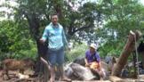 Latin America Culture Videos: Life in Rural Nicaragua. Epi