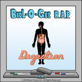 The Digestive System (How The Digestive System Works) - Bi