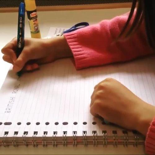 Grammar Interactive Notebook EFL Basics