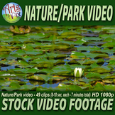 "Stock VIDEO Footage - ""Nature & Park Scenes"" - NATURE VIDE"