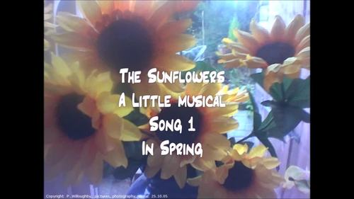 """""""The Sunflowers""""  A spring,summer or Harvest mini musical"""