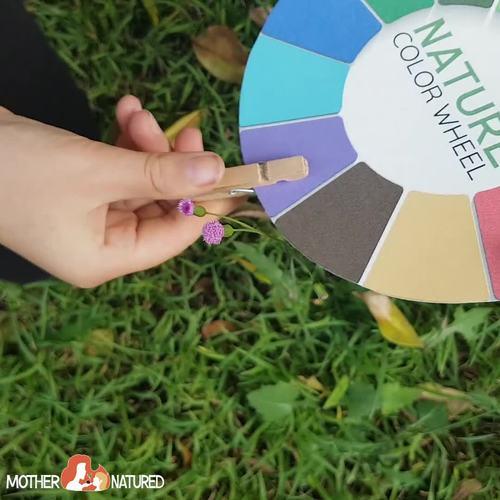 Nature Colour/Color Hunt Wheel