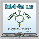 Photosynthesis:The Calvin Cycle (Light-Independent Reactio