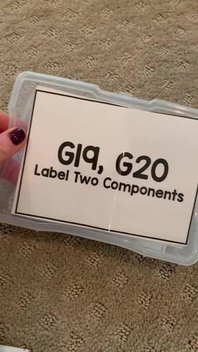 Select & Label Two Items Task Cards [ABLLS-R Aligned C40, C41, G19, G20]