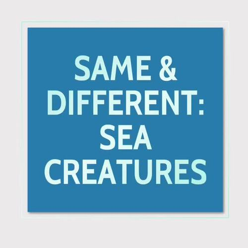 Sort and Classify: Same and Different SEA CREATURES