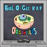 Organelles (Cell Structure and Functions) - Biol-O-Gee R.A.P.