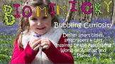 STEAM Biomimicry for Young Children - Architecture and Design