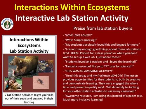 Interactions Within Ecosystems - Biotic and Abiotic - 7 Lab Station Activities