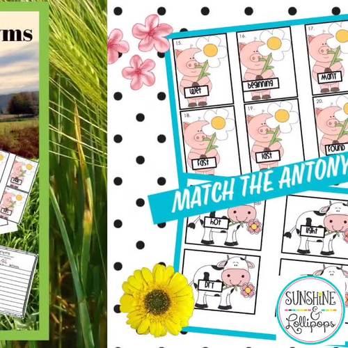 Vocabulary Animal Antonyms Springtime on the Farm Match-Up