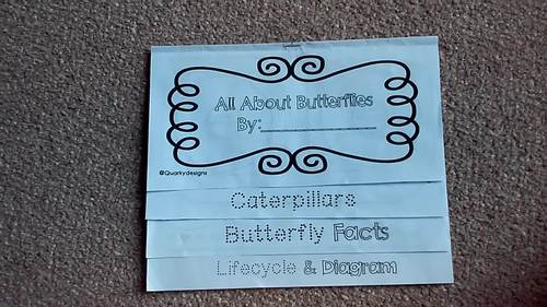 Butterfly: 4 Page Interactive Science Flip-Book