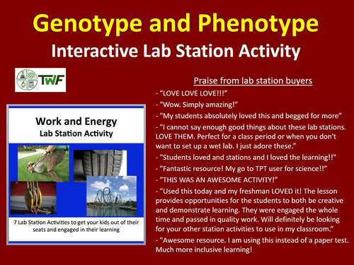 Work and Energy - Lab Station Activity