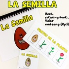 Plant life cycle and parts in Spanish {Song and Video Included}
