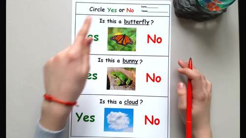Spring Activity for Speech Therapy - Yes No Questions