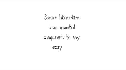 Maintaining Biodiversity Mock Conference