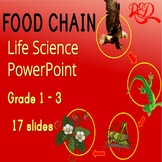Free Food Chain Life Science Video Lesson ❘ Interactive Wh