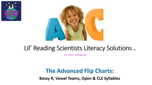 Vowel Teams - Picture Prompts - Flip Chart (Miscellaneous Vowel Teams) (OG)