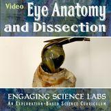 Video: Eye Anatomy & Dissection  2 Activities