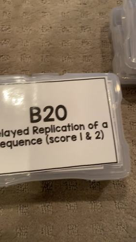 Delayed Match and Sequence Task Cards [ABLLS-R Aligned B20, B21]