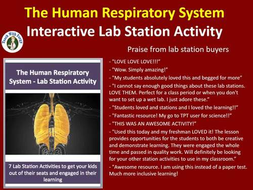 The Human Respiratory System - 7 Engaging Lab Station Activities