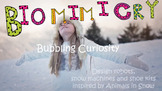 STEAM Biomimicry for Young Children - Animals in Snow