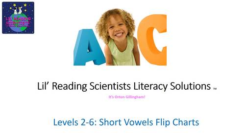 Short I (CVC) - Picture Prompts and Words Flip Chart (OG)