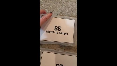 Matching Task Cards [ABLLS-R Aligned B5, B7]