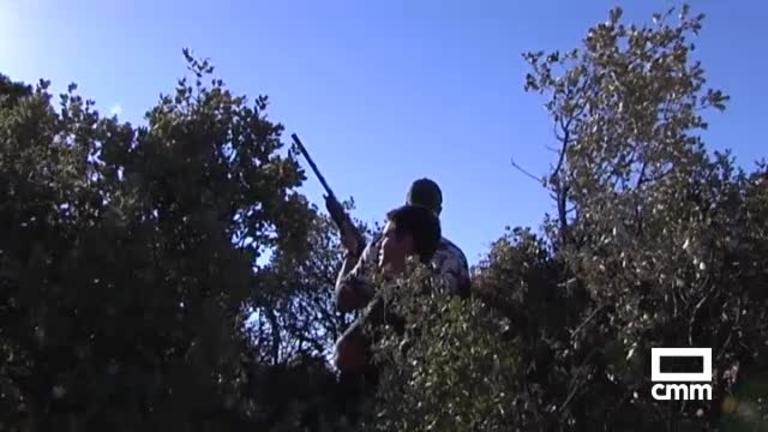 Se abre la media veda de caza: así se espera que sea en Castilla-La Mancha