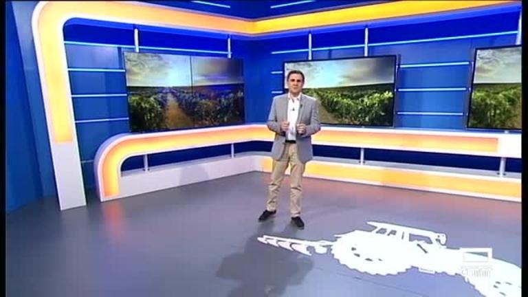 El Campo | El Gobierno aprobará la destilación el martes
