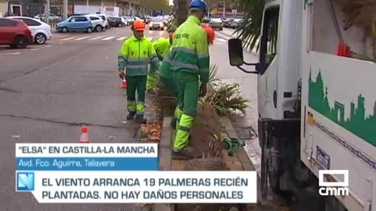 Temporal Elsa: incidencias por caída de árboles en Castilla-La Mancha